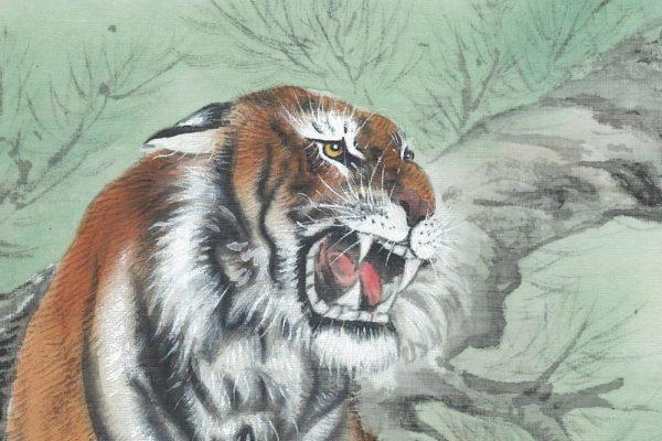 tiger-1-1000×1000-600×400